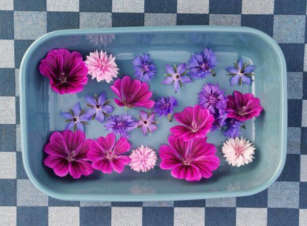 Eetbare bloemen in schaal
