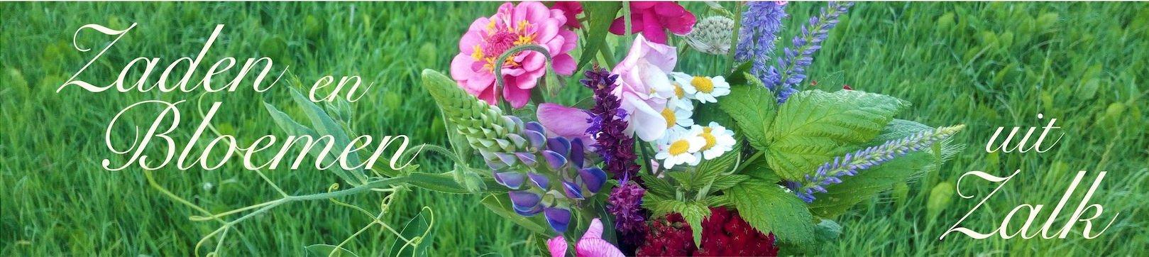 Zaden en Bloemen uit Zalk