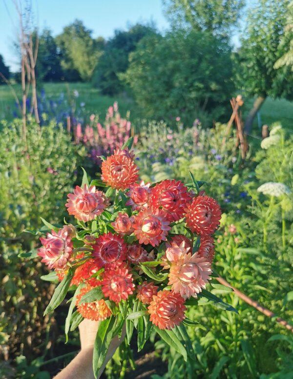 Strobloemen bos uit pluktuin